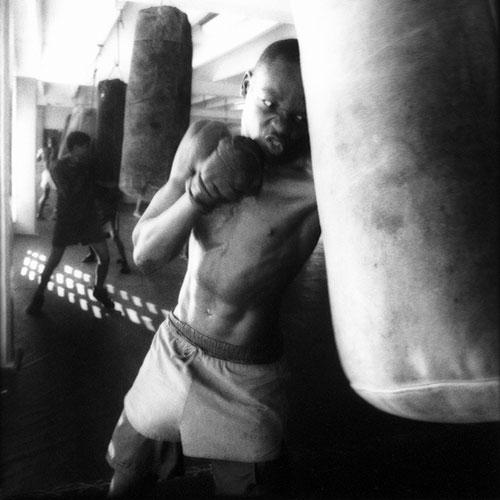 Cuban Boxers 1 von 4 | Wolf Böwig