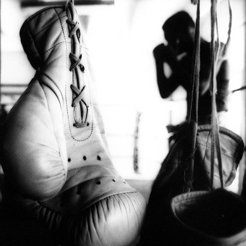 Cuban Boxers 4 von 4 | Wolf Böwig